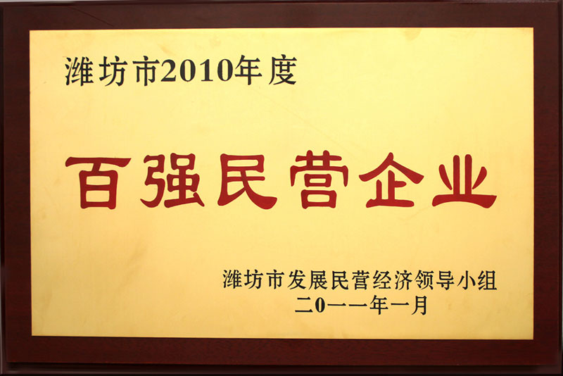 2010 top 100 private enterprises