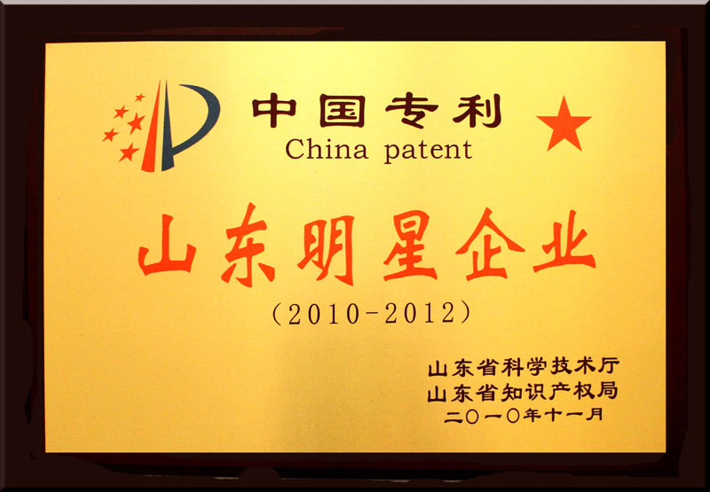 Shandong Star Enterprise of Chinese Patent