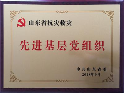 山东省抗灾救灾先进基层党组织